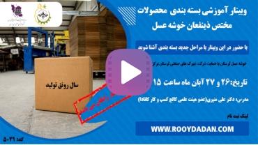 ویدیو وبینار بسته بندی محصولات